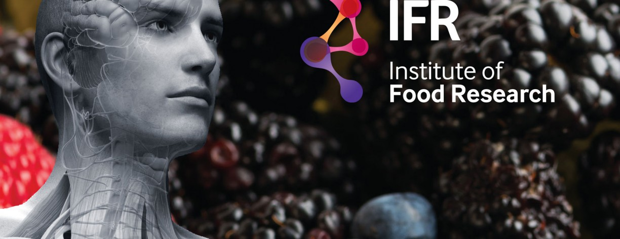 Mashuni designed the 2015 Annual Report for the Institute of Food Research
